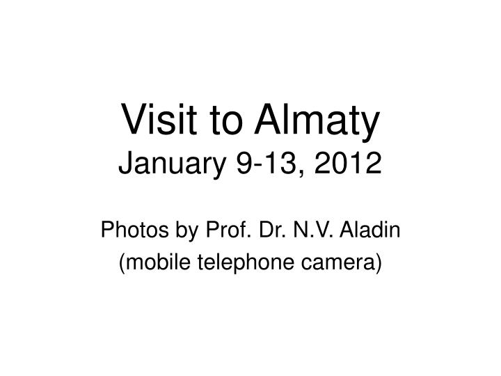 Visit to almaty january 9 13 2012