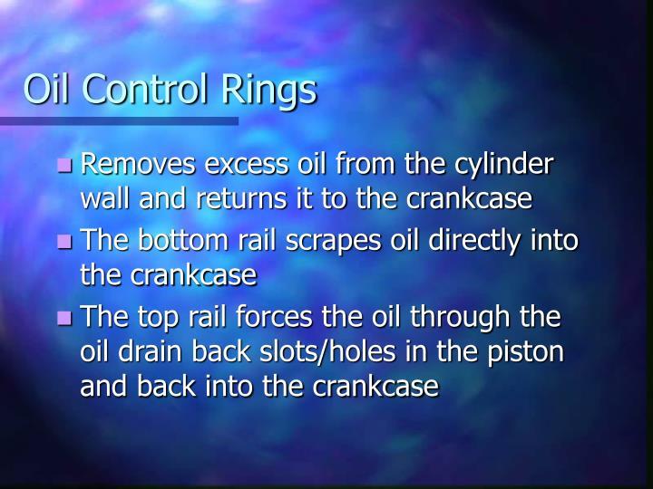 Oil Control Rings