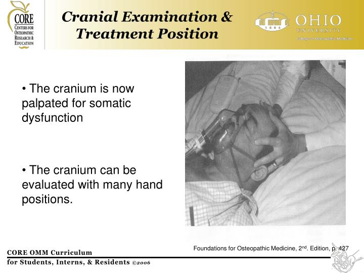 Cranial Examination & Treatment Position