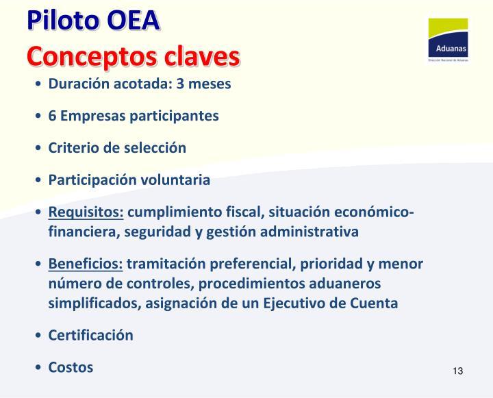 Piloto OEA