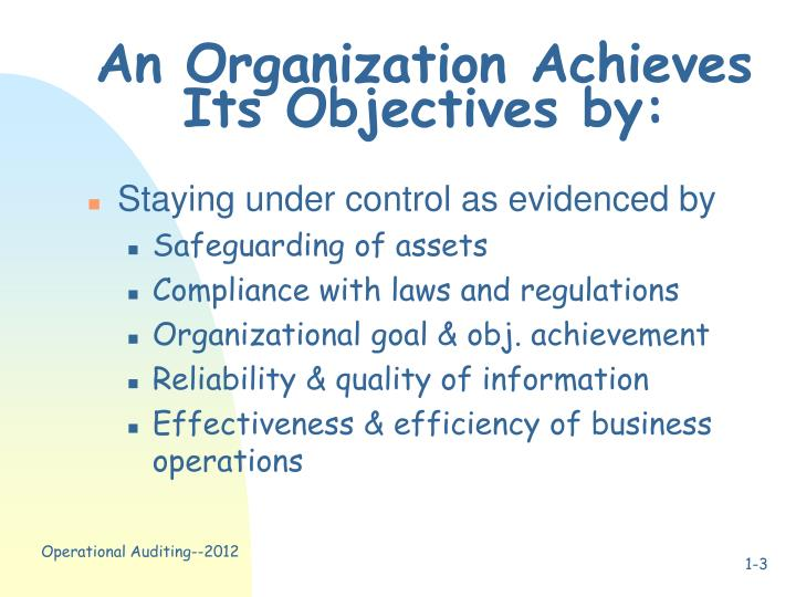 An organization achieves its objectives by
