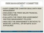 risk management committee