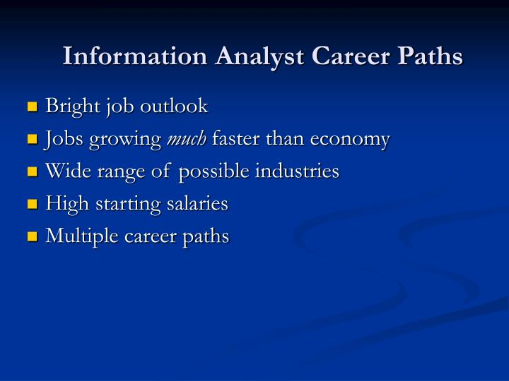 Information Analyst Career Paths