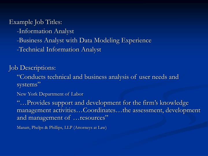 Example Job Titles: