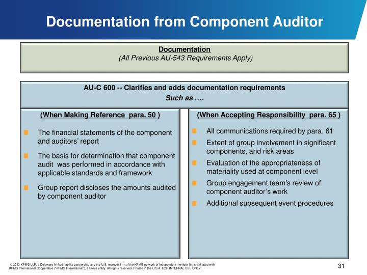 Documentation from Component Auditor