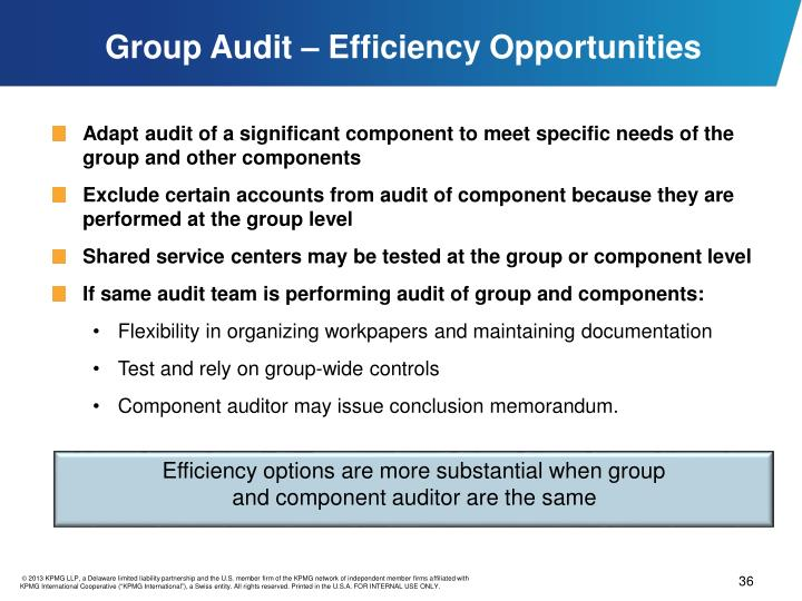 Group Audit – Efficiency Opportunities