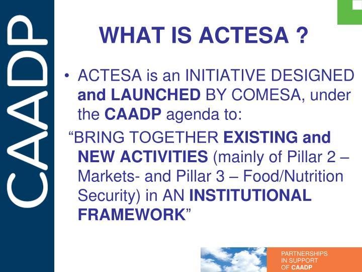 What is actesa
