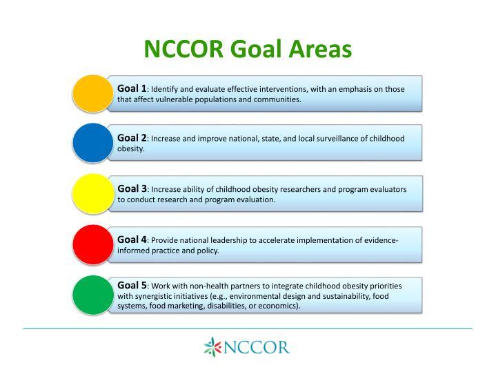 NCCOR Goal Areas