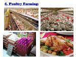 4 poultry farming