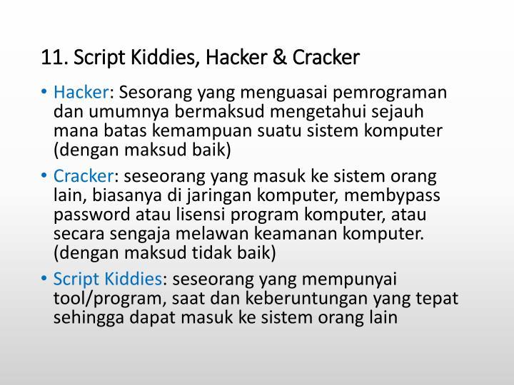 11. Script Kiddies, Hacker &