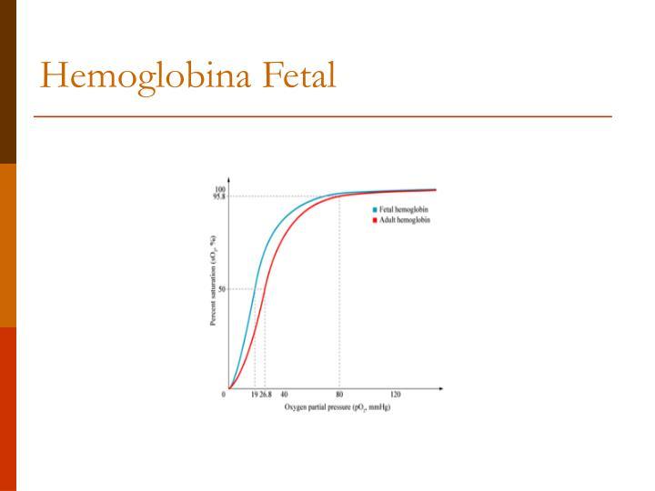 Hemoglobina Fetal