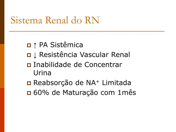 Sistema Renal do RN
