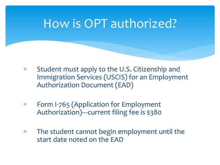 How is OPT authorized?