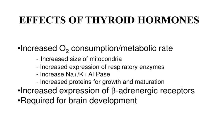 EFFECTS OF THYROID HORMONES