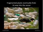 fragmented plastic eventually finds its way into the ocean