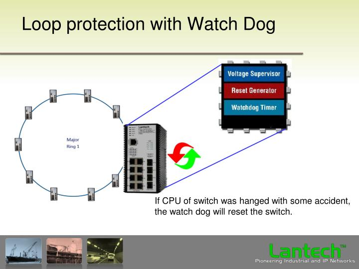 Loop protection with Watch Dog