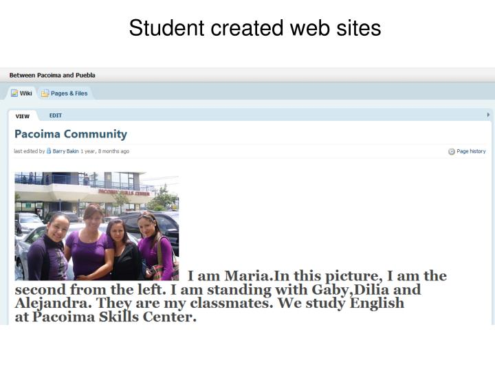 Student created web sites