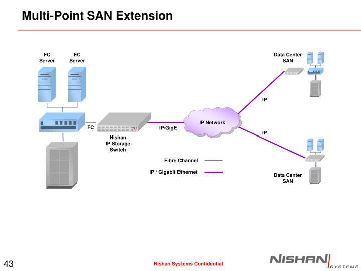 Multi-Point SAN Extension