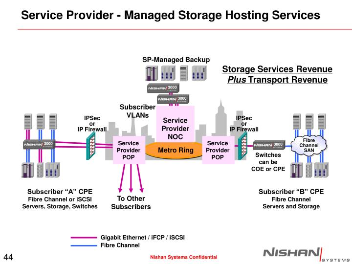 Service Provider - Managed Storage Hosting Services