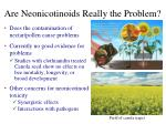 are neonicotinoids really the problem1