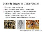 miticide effects on colony health