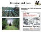 pesticides and bees