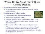 where do we stand on ccd and colony decline