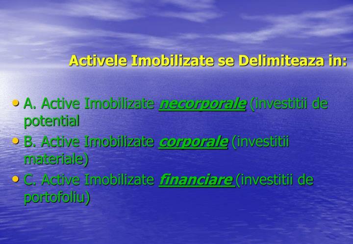 Activele Imobilizate se Delimiteaza in: