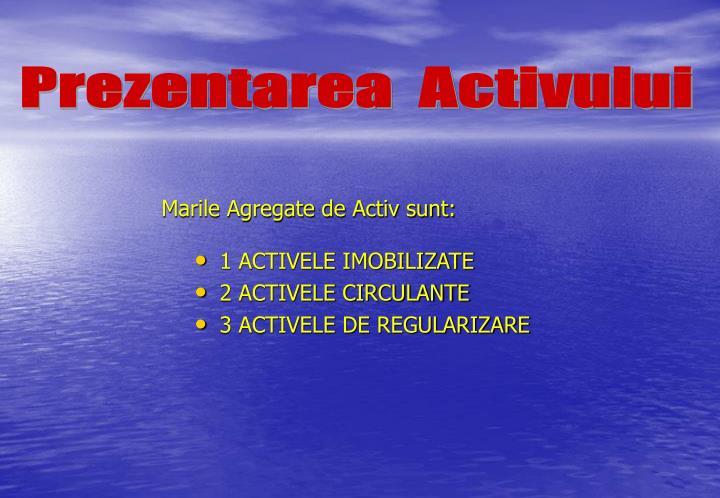 Marile agregate de activ sunt