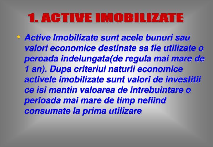 1. ACTIVE IMOBILIZATE