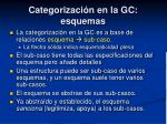 categorizaci n en la gc esquemas