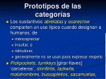 prototipos de las categor as4