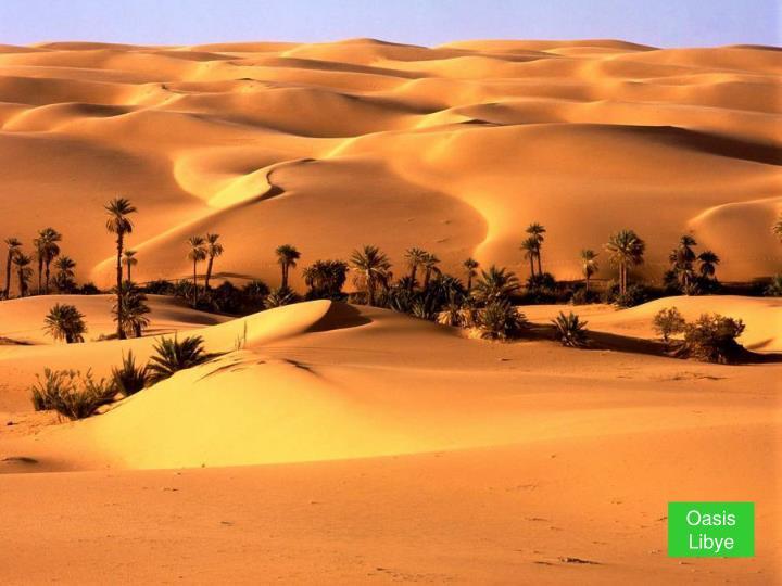 Oasis     Libye