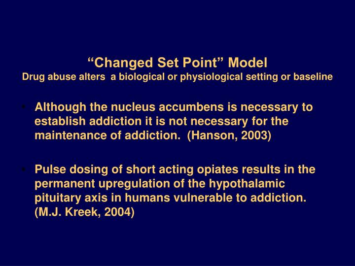 """""""Changed Set Point"""" Model"""