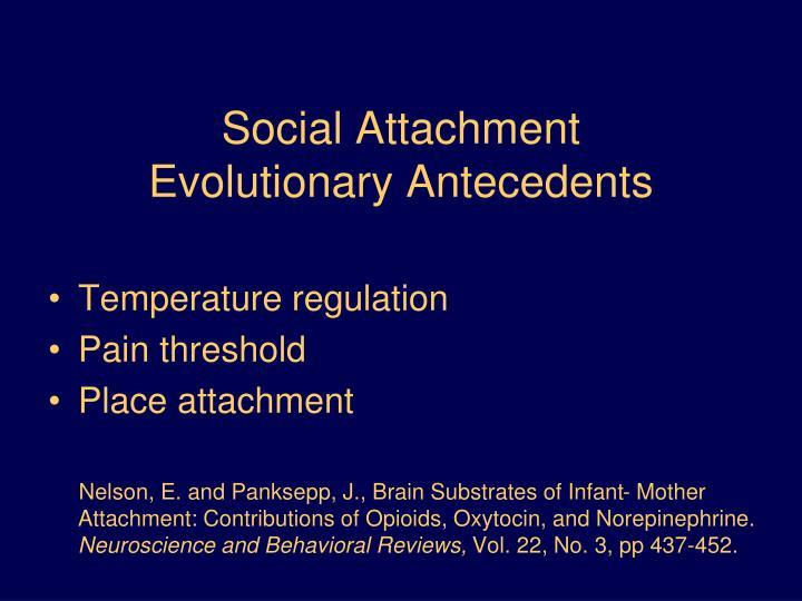 Social Attachment