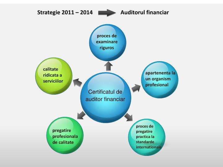 Strategie 2011 – 2014                    Auditorul financiar