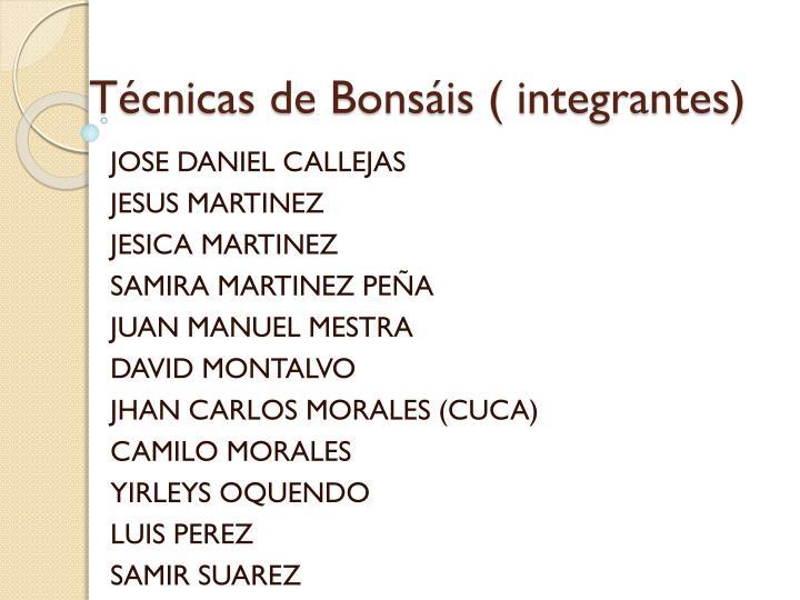 T cnicas de bons is integrantes