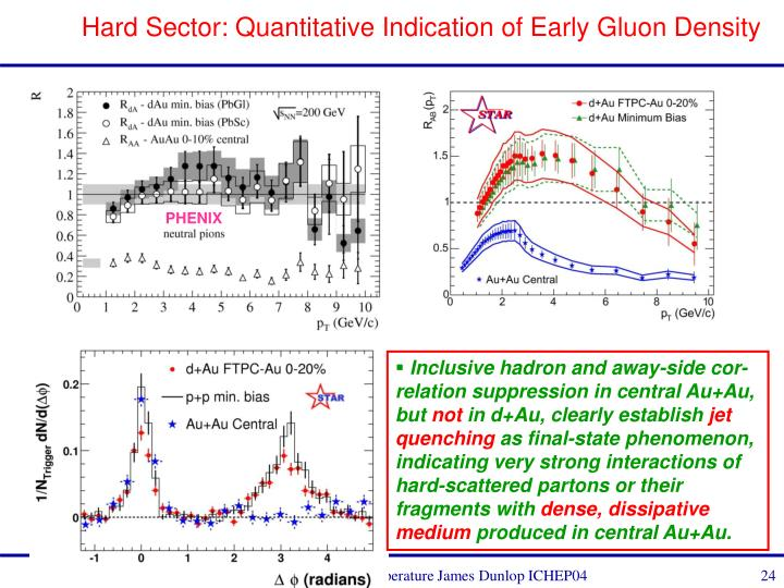 Hard Sector: Quantitative Indication of Early Gluon Density