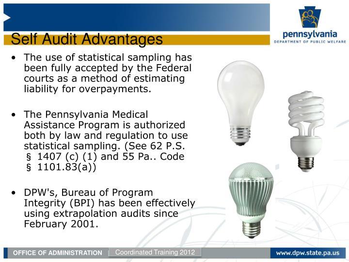 Self Audit Advantages