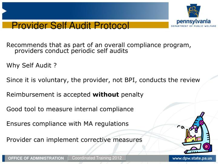 Recommends that as part of an overall compliance program, providers conduct periodic self audits