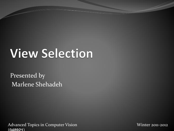 view selection n.
