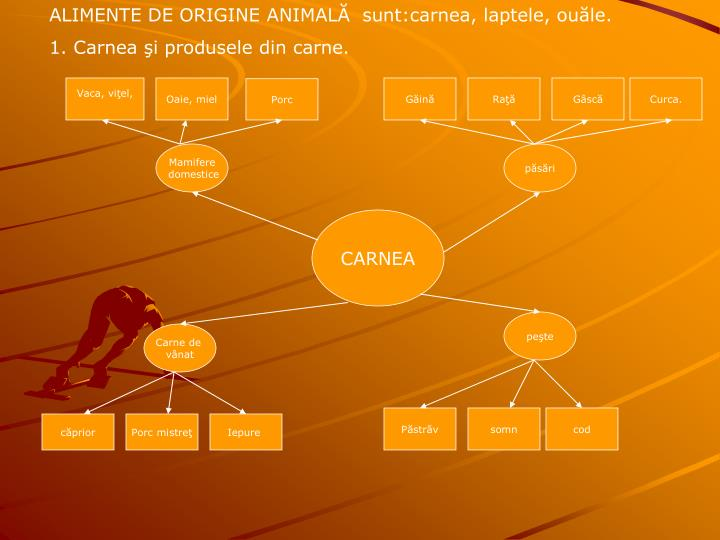 ALIMENTE DE ORIGINE ANIMAL