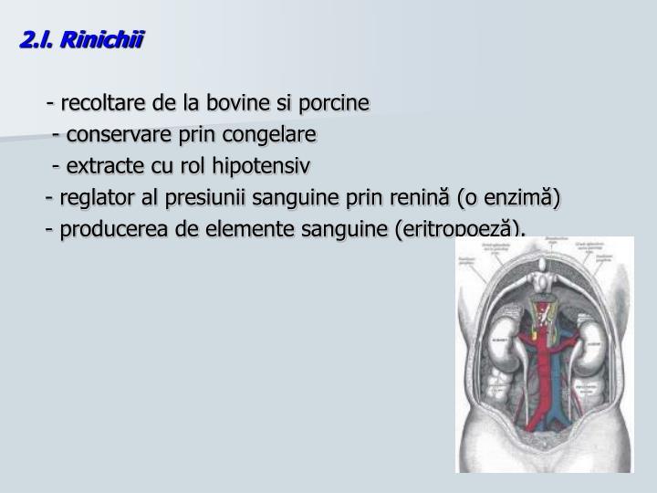2.l. Rinichii