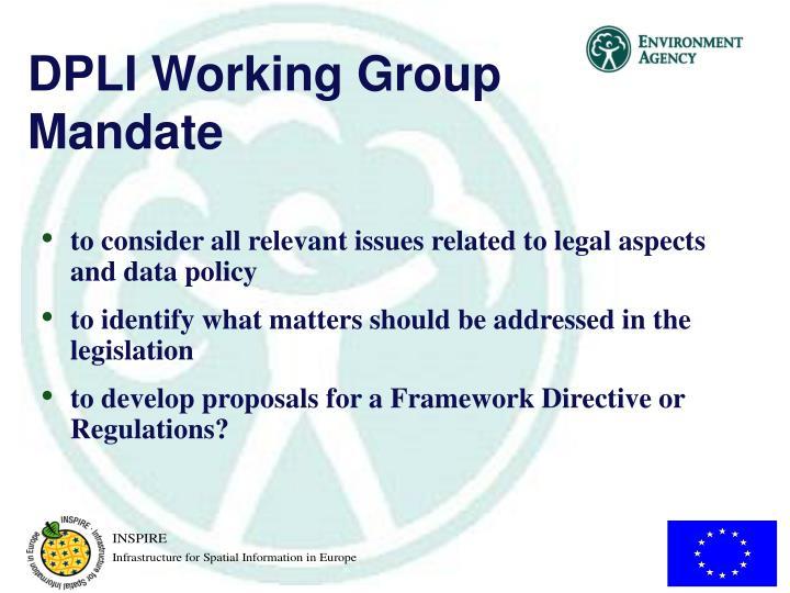 DPLI Working Group Mandate