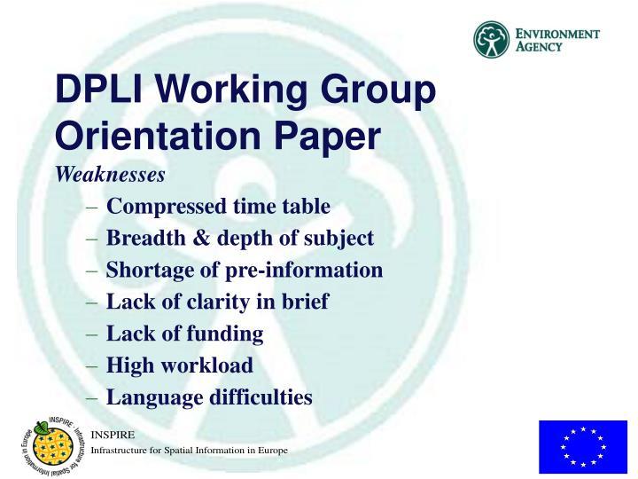 DPLI Working Group Orientation Paper