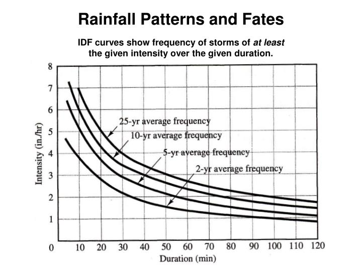 Rainfall patterns and fates1