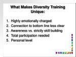 what makes diversity training unique