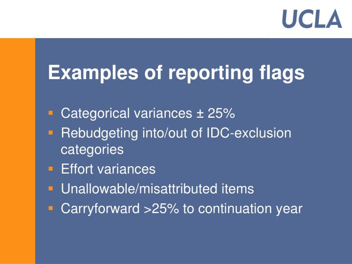 Examples of reporting flags