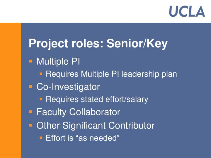 Project roles: Senior/Key