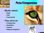 pets companions